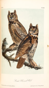 John James Audubon. The Birds of America. From Drawings Made in the United States and Their