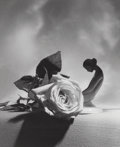 Photographs, Horst P. Horst (American/German, 1906-1999). Eva with Rose, 1988. Gelatin silver. 11 x 9 inches (27.9 x 22.9 cm). Signed...