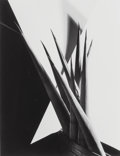 Photographs, Imogen Cunningham (American, 1883-1976). Agave Design, 1920. Gelatin silver, printed later. 13 x 9-7/8 inches (33.0 x 25...