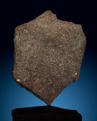 Plainview Meteorite Slice Ordinary Chondrite (H5) Plainview, Hale County, Texas, USA <