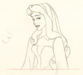 Animation Art:Production Drawing, Sleeping Beauty Briar Rose Animation Drawing (Walt Disney, 1959). ...