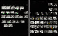 Music Memorabilia:Photos, Jimi Hendrix Experience - Massive Group of Photo Negatives withContact Sheets and Copyright (Germany, 1967)....