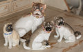 Ceramics & Porcelain, Continental:Other , Four Porcelain Pug Figures, late 19th century and later.Including example by Carl Thieme. Marks: (various). 8-3/8inche... (Total: 4 Items)