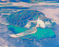 Prints & Multiples, Andy Warhol (1928-1987). Turtle, 1985. Screenprint on Lenox Museum Board. 31-1/2 x 39-1/2 inches (80.0 x 100.3 cm) (shee...