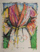 Jim Dine (b. 1935) Olympic Robe, from Official Arts Portfolio of the XXIVth Olympiad, Seoul, Korea, 1988 Lithograp... (1...