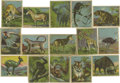 Miscellaneous Collectibles:General, Canadian Chewing Gum Co. Papoose Animal Series Group Lot of 80.Fine assortment from the Canadian Chewing Gum Co.'s tough P...