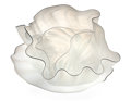 Art Glass, Dale Chihuly (American, b. 1941). Four-Piece White Seaform Groupwith Black Lip Wrap, 1984. Blown glass. 11-3/4 x 25-3/4...(Total: 4 Items)