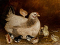 Fine Art - Painting, American, Ben Austrian (American, 1870-1921). Mother Hen and Chicks,1907. Oil on canvas. 15 x 20 inches (38.1 x 50.8 cm). Signed ...