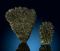 Meteorites:Moldavite, Moldavite (2 pieces). Moldau River Valley. CzechRepublic. ...