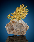 Minerals:Museum Specimens, Crystallized Gold on Quartz. Eagle's Nest Mine (Mystery WindMine). Sage Hill, Michigan Bluff District (MichiganBluff...