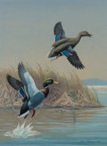 American:Sporting, Harry Curieux Adamson (American, 1916-2012). Mallards, 1941.Gouache on board. 15-1/2 x 11-1/2 inches (39.4 x 29.2 cm). ...