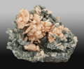 Minerals:Cabinet Specimens, Stilbite. Pune District (Poonah District).Maharashtra. India. 7.09 x 5.51 x 5.12 inches(18.00 x 14.00 x 13.0...