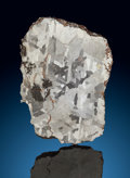 Meteorites:Palasites, Campo del Cielo Meteorite Slice. Iron, IAB-MG. Chaco,Argentina. Found: 1576. ...