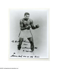 Boxing Collectibles:Autographs, Muhammad Ali Signed 8 X 10 Photo. Boxing immortal Ali in fightingpose. Ali was one of the most popular sports figures of al...
