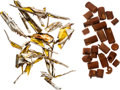 Explorers:Space Exploration, Apollo Flown Kapton Foil (Fifteen Pieces) and Twenty-four Incomplete Ablative Plugs from the Estate of NASA Engineer Donald T....