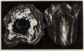 Fine Art - Work on Paper:Print, Lowell Nesbitt (1933-1993). Tulip and Poppy, 1973. Etching in black on paper. 23-3/4 x 37 inches (60.3 x 94.0 cm) (image...