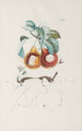 Salvador Dalí (1904-1989) Fruits Trouees (Fruit with Holes), from Les fruits, 1969 Photolithograph in colors on B...