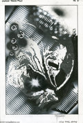 Original Comic Art:Splash Pages, John Totleben - Swamp Thing #60, Splash Page 5 Original Art (DC,1983). John Totleben's mixed-media collage spotlights a ver...