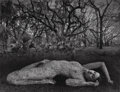 Photographs:Gelatin Silver, Jerry Uelsmann (American, b. 1934). Untitled (Nude andforest), 1983. Gelatin silver. 14-7/8 x 19-1/2 inches (37.8 x49....