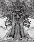 Photographs, Jerry Uelsmann (American, b. 1934). Untitled (Tree Goddess), 1994. Gelatin silver. 18-1/2 x 15-1/4 inches (47.0 x 38.7 c...