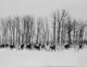 Henri Cartier-Bresson (French, 1908-2004) Gyor, Hungary, 1964 Gelatin silver, printed later 11-3/4 x 17-1/2 inches (2...
