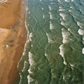 Photographs:Digital, Terry Evans (American, b. 1944). Lake Michigan, Beach and Dogs,Chicago, July 23, 2003. Digital pigment print. 28-1/2 x ...