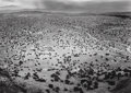 Photographs, William Clift (American, b. 1944). Pojaque Plains, from Black Mesa, San Ildefonso, New Mexico, 1973. Gelatin silver. 9 x...