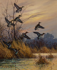 Harry Curieux Adamson (American, 1916-2012) Green Wing Teal Oil on canvas 23-1/2 x 19-1/2 inches