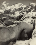 Photographs, Albert Steiner (American, 1877-1965). A Group of Ten Photographs of the Swiss Alps, circa 1920s. Gelatin silver. 11-1/4 ... (Total: 10 Items)