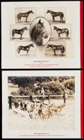 Olympic Collectibles:Autographs, Seabiscuit Christmas Card Lot of 3.. ...