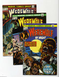 Bronze Age (1970-1979):Horror, Werewolf by Night Group (Marvel, 1973-76) Condition: Average VF/NM.Group lot of 29 issues includes #11, 12, 13, 15 (new ori... (29Comic Books)