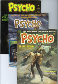 Bronze Age (1970-1979):Horror, Psycho Group (Skywald, 1971-75) Condition: Average VF+. This groupcontains issues #3, 10, 14, 19, 20, and 24. Issue #19 fea... (6Comic Books)