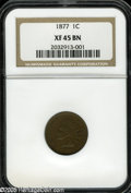 1877 1C XF45 NGC. A pleasing light to medium brown example of this key date series. Relatively nice definition remains o...
