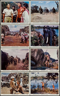 """Tarzan Goes to India (MGM, 1962). Color Photo Set of 12, & Photos (4) (8"""" X 10""""). Adventure. ... (Total: 1..."""