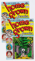 Modern Age (1980-Present):Alternative/Underground, Home Grown Funnies #nn First and Second Printings Group of 2(Kitchen Sink, 1971) Condition: Average VF-.... (Total: 2 ComicBooks)