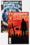 Modern Age (1980-Present):Horror, The Walking Dead #6 and 9 Group (Image, 2004) Condition: AverageNM-.... (Total: 2 Comic Books)