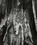 Photographs, Michael A. Smith (American, b. 1942). Yosemite, 1988. Gelatin silver. 21-1/2 x 17-3/8 inches (54.6 x 44.1 cm). Signed an...