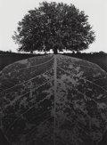 Photographs, Jerry Uelsmann (American, b. 1934). Untitled, 1964. Gelatin silver. 13-1/4 x 9-5/8 inches (33.7 x 24.4 cm). Initialed an...
