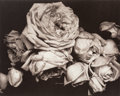 Photographs, Edward Steichen (American, 1879-1973). A Group of Seven Photographs, 1903. Photogravure, printed 1981. 121-5/8 x 10 inch... (Total: 7 Items)