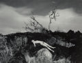 Photographs, Donald Woodman (American, b. 1945). Nude on Prairie Hill and Sand Dunes (two photographs), circa 1975. Gelatin silve... (Total: 2 Items)