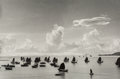 Photographs, Werner Bischof (Swiss, 1916-1954). Harbour of Kowloon, Hong Kong, 1952. Gelatin silver, printed later. 12-1/4 x 18-1/2 i...