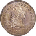 Early Dollars, 1795 $1 Flowing Hair, Two Leaves, B-1, BB-21, R.2, AU50 NGC....