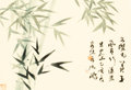 Asian:Chinese, Shen Peng (Chinese, b. 1931). Bamboo with Calligraphy. Inkand color on paper. 13 x 19 inches (33.0 ...