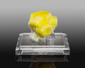 Minerals:Small Cabinet, Sulfur on Aragonite. Agrigento Province (Girgenti Province).Sicily. Italy. ... (Total: 2 Items)