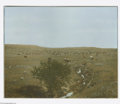 Fine Art:Paintings, LATON ANTON HUFFMAN (American 1854-1931) Grazing Cattle Color photo15.75in x 19.75in. Stamped on reverse, numbered #318...