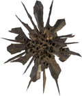 Fine Art - Sculpture, American, Judith Brown (American, 1932-1992). Nature Form. Mixedmedia. 56 x 44 inches (142.2 x 111.8 cm). ...