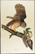 Books:Natural History Books & Prints, John James Audubon. Group of Over Eighty Prints from the Amsterdam The Birds of America. [New York and Amsterdam: 19...