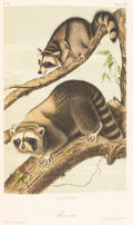 Books:Natural History Books & Prints, John James Audubon and the Rev. John Bachman. The Quadrupeds ofNorth America. New York: Published by V. G. Audubon,... (Total:3 Items)