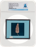 Explorers:Space Exploration, Apollo 11 Original NASA Glass Slide, an Image of the Gold Olive Branch, Directly From The Armstrong Family Collection™, Ce...
