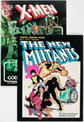 Modern Age (1980-Present):Miscellaneous, Marvel Graphic Novel Group of 2 (Marvel, 1982) Condition: Average FN.... (Total: 2 Comic Books)